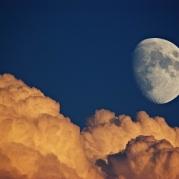 Si-mis-dedos-pudieran-deshojar-a-la-luna